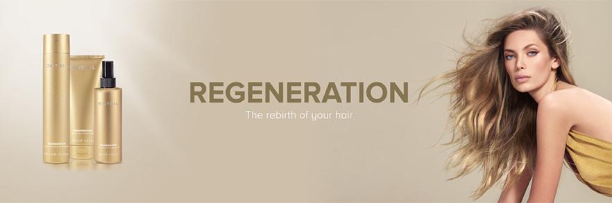 Creative Walk Regeneration