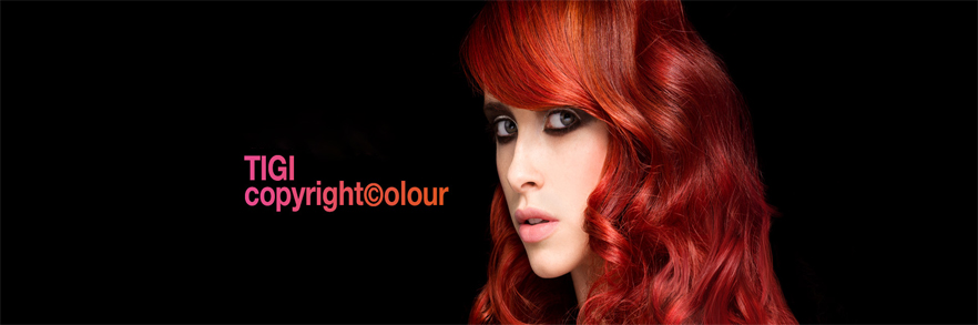 Copyright Colour Gloss
